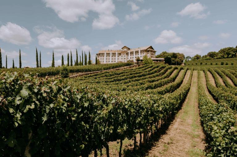 spa do vinho vale dos vinhedos