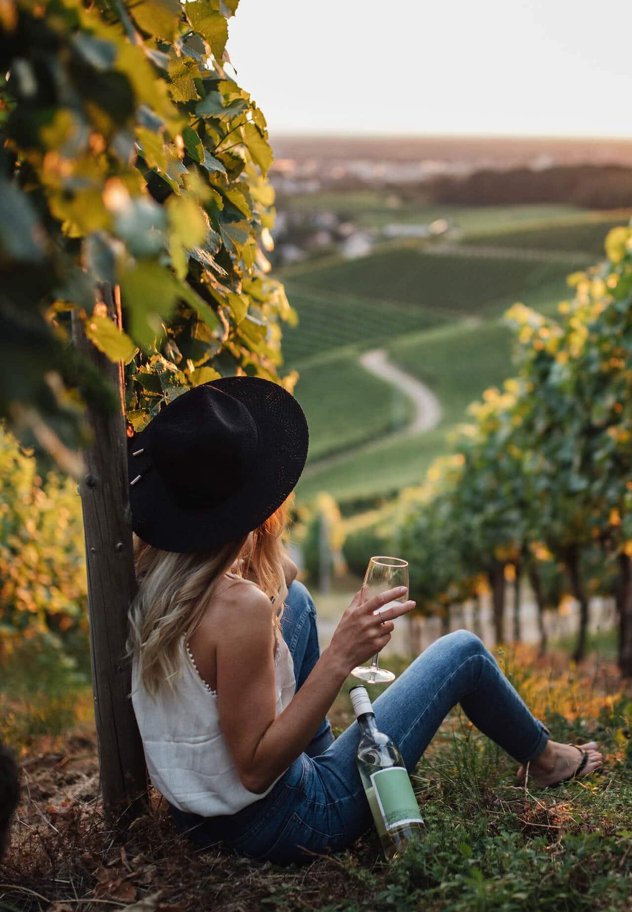Vinho sem enochatice - cursos de vinho em SP