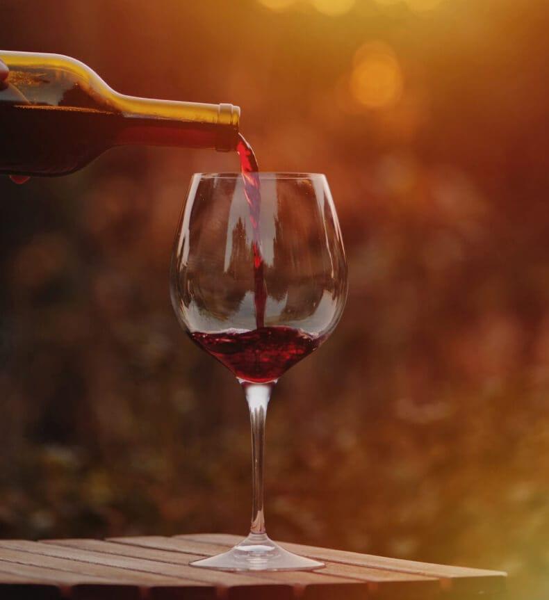 Cursos de vinho em SP Del Vino